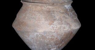 למה הונחו קרפדות ערופות ראש בקנקן בתוך קבר בן 4,000 שנה בירושלים?