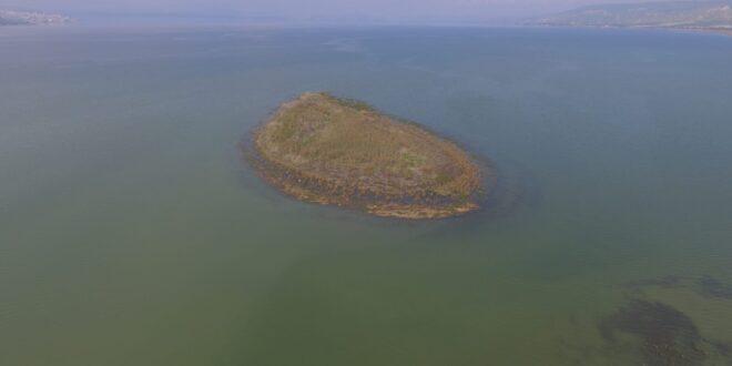 מדהים: צפו בכינרת כפי שלא נראתה זמן רב, האי עדיין גלוי