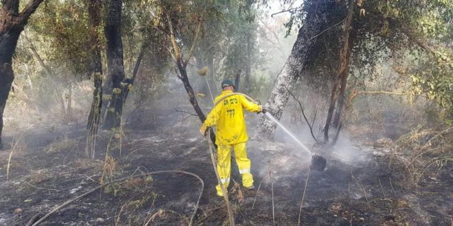 """מנהל בקק""""ל: """"צוותי היערנים שלי מכבים את היערות בדמעותיהם"""""""