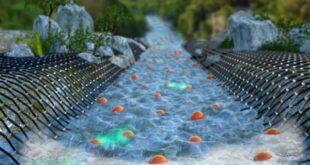 מדהים! מדענים צפו לראשונה באלקטרונים הזורמים בתצורה של נוזל