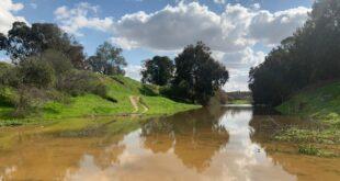 שבת שמשית: אלפים פקדו את השמורות והיערות באזור אשכול