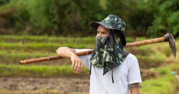 שר החקלאות: לא לאשר כניסת עובדי חקלאות מתאילנד לישראל