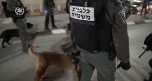 לוחמי משמר הגבול פעלו היום למעצר מבוקש במעורבות במספר אירועי ירי מקומי...