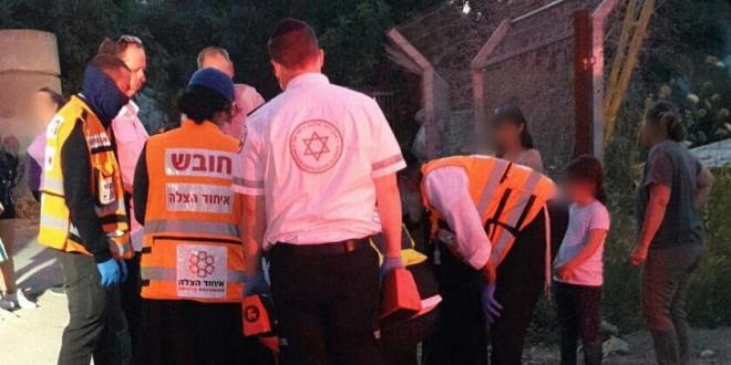 ילדה בת 9 נפלה מסוס בכניסה למושב צפרירים ונפצעה קל