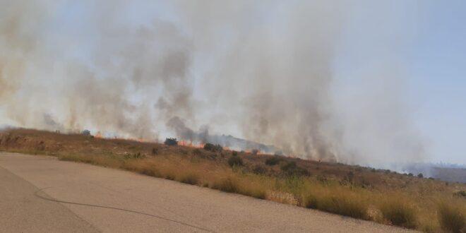 השריפה בניר עם נגרמה כתוצאה מבלון תבערה