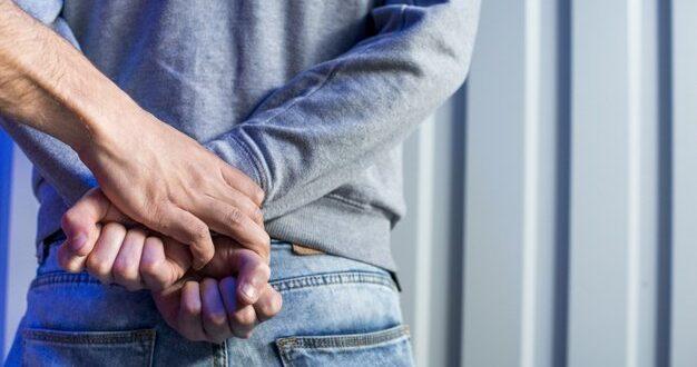 שני תושבי חיפה נעצרו בחשד לתקיפת וטרינר ופקח