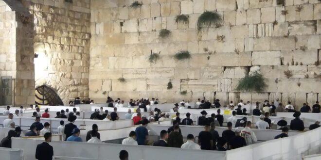 עם 200 מתפללים: שידור חי ממעמד הסליחות ברחבת הכותל
