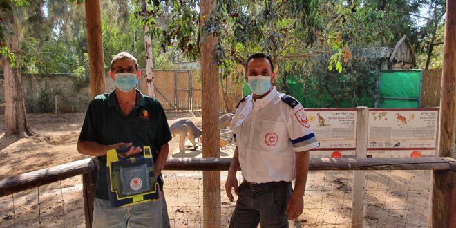 """בהלה בספארי: המטפל התמוטט – מתנדב מד""""א הציל את חייו"""