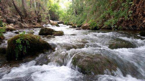 -חרמון-500x281 משרדי הבריאות והגנת הסביבה: התגלו תוצאות דיגומים חריגות בנחלים בצפון הארץ