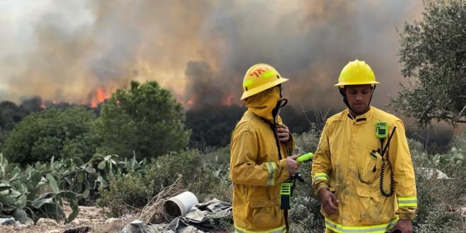 שריפת חורש גדולה פרצה סמוך ליער עירון וכפר קרע