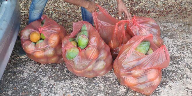 שני תושבי עראבה נעצרו בחשד לגניבה ממטעים הסמוכים לכפר נחום