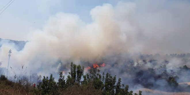 שריפת חורש נרחבת סמוך לקריית ענבים