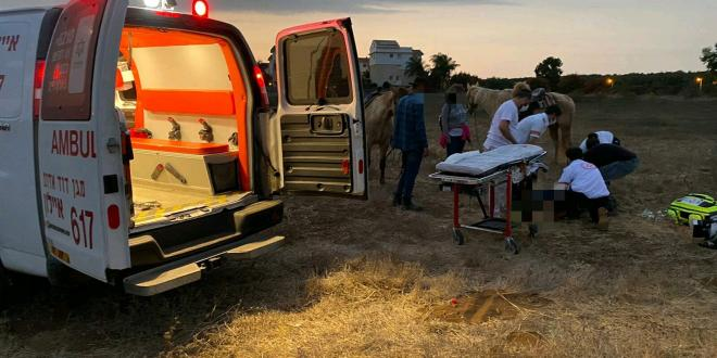 בן 60 נפל מסוס סמוך לנס ציונה, מצבו בינוני