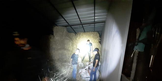 חלק מהשקים הוסלקו בדיר: תושב זרזיר מואשם בגניבת 12 טונות זיתים