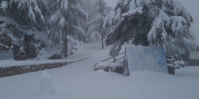 תחזית מזג האוויר: גשם ירד מצפון הארץ ועד מרכז הנגב, שלג בחרמון