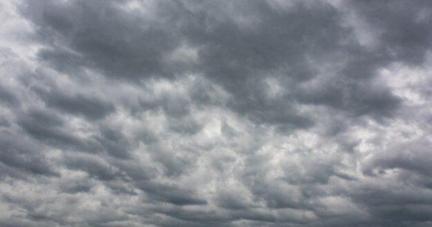 תחזית מזג האוויר: גשם מקומי בצפון ובמרכז, שלג יירד בחרמון