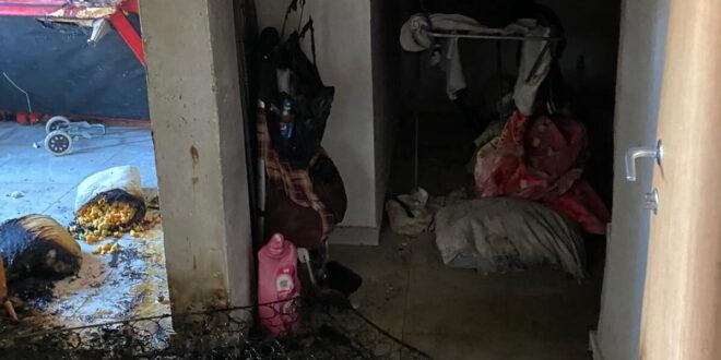 גבר כבן 40 וילד בן 9 חולצו מדירה בוערת באשקלון