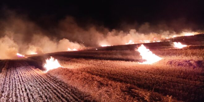 שריפה פרצה בשדה חיטה בין טמרה לנעורה, לוחמי האש פועלים לכבותה