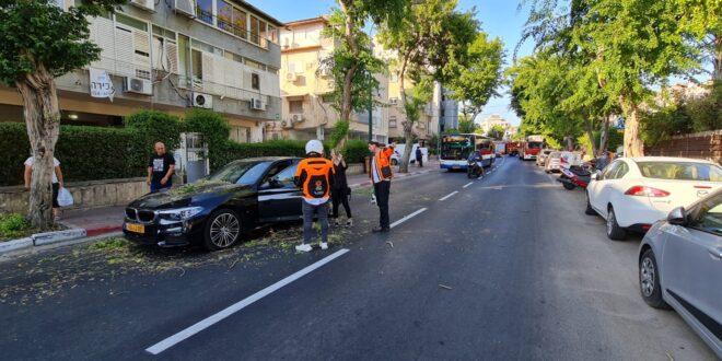 נס: עץ קרס על רכב ברמת גן – אין נפגעים