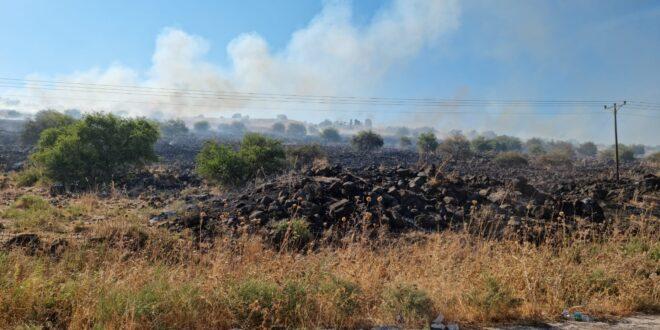 שריפות פרצו צפונית לכנרת, לוחמי אש ומטוסי כיבוי בזירה