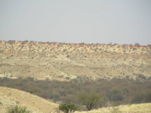 משקעי חול במדבר הקלהרי שבנמיביה. מטרת המחקר הייתה לתארך את הופעתם הראשונית בנוף כדי להבין את התזמון של תהליכי יצירת המדבר.