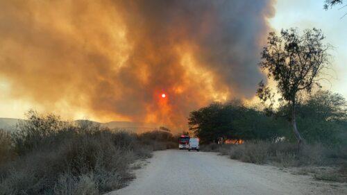 שריפת קוצים באזור ירוחם