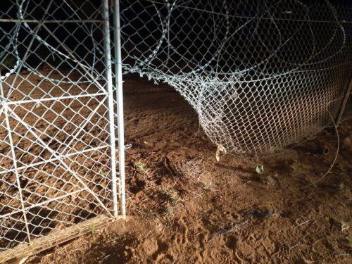 גנבים נמלטו לאחר שנצפו בוזזים תוצרת חקלאית בשווי עשרות אלפי שקלים ביישוב פצאל