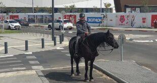 פרשי משטרה מסיירים בבאר שבע
