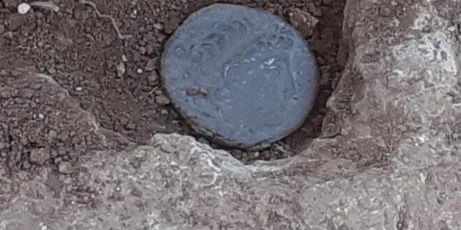 מאות בני נוער חפרו בשומרון – ומצאו מטבעות עתיקים בני אלפי שנים